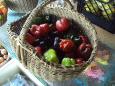bell-peppers