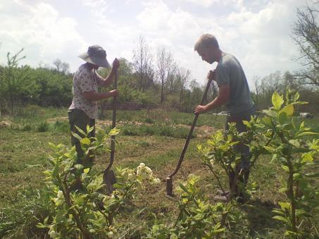 mj-tim-planting